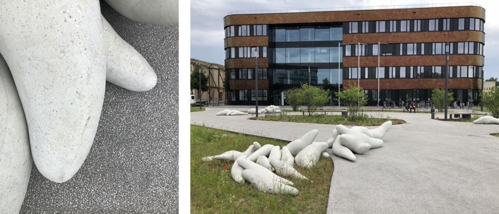 , Deutsches Zentrum für integrative Biodiversitätsforschung (iDiv) - der Vorplatz in voller Blüte